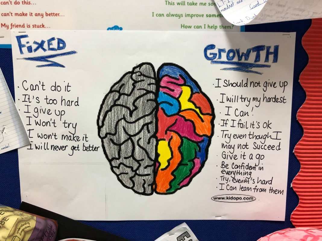 Fixed mindset growth mindset